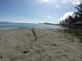 Amami Beach Life - The resort's beach 2