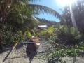 Amami Beach Life - The resort's beach 7